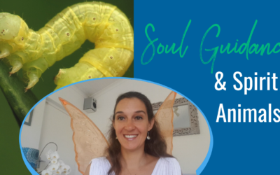 Your Soul speaks in Symbols + An Unusual Spirit Animal Message